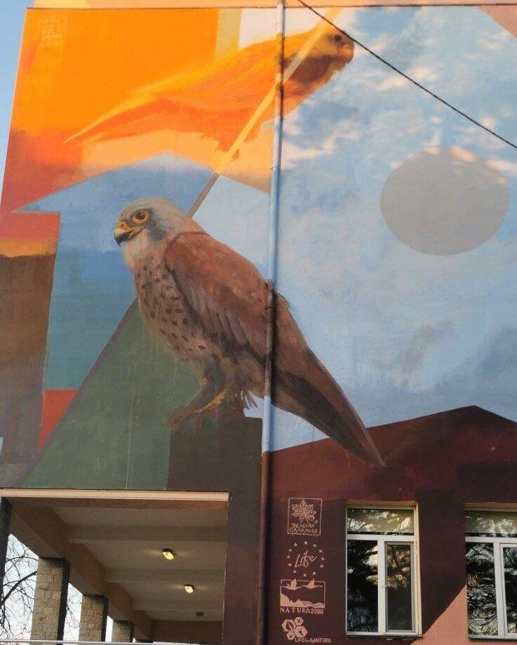 """ОУ"""" Иван Вазов"""" в Свиленград е вече с изрисувани белошипи ветрушки - голяма снимка"""